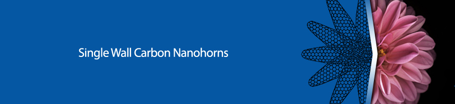 Carbonium - Single wall carbon nanohorns 1