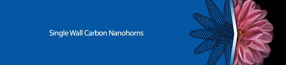 Carbonium - Single wall carbon nanohorns 1